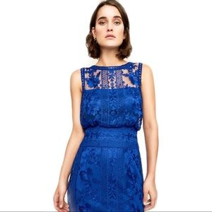 TADASHI - KAISRA EMBROIDERED LACE GOWN BDM18593L